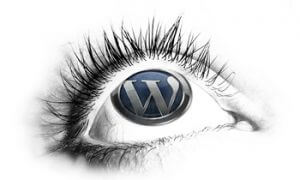 consultoria-na-administraca-do-wordpress